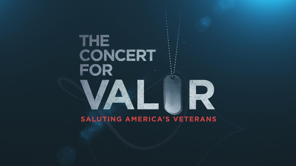 Technology Management Image: HBO Salutes America's Veterans With The Concert For Valor